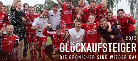 Die Aufstiegsmannschaft der SpVgg Goldkronach 2014/15. Foto: anpfiff.